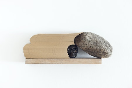 Caveirinha (Shelf-Objects series), 2010