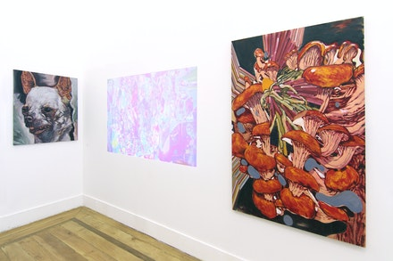 Vista da exposição inaugural, 2016