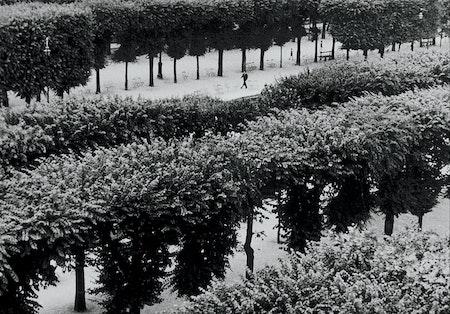 Fontenay-aux-Roses, 2012