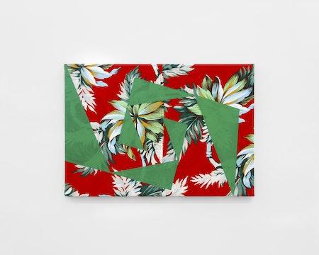 Camila Oliveira Fairclough_AC (Clarovermelho-verde), 2018_acrylic paint on polyester_35 x 50 cm
